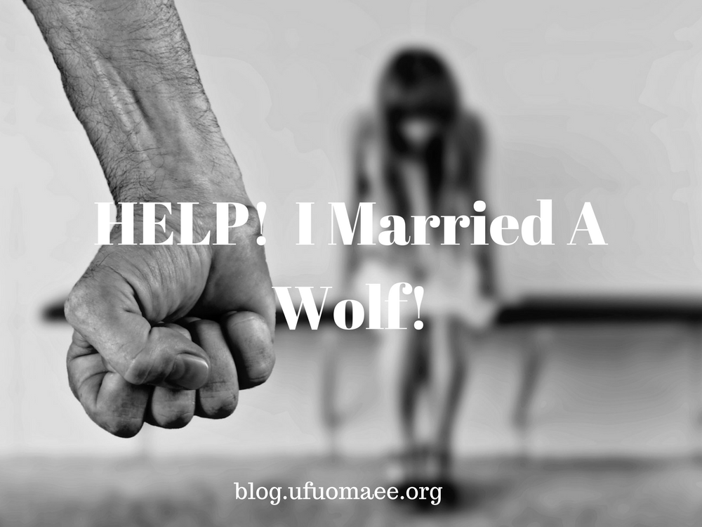 Editor's Pick: HELP!  I Married A Wolf!